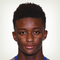Demarai Gray - logo