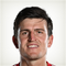 Harry Maguire - logo